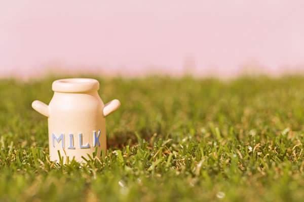 ミルメークが給食に出た地域は?栄養やカフェイン賞味期限が気になる!